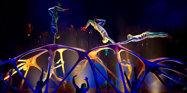 билеты в Цирк Дю Солей